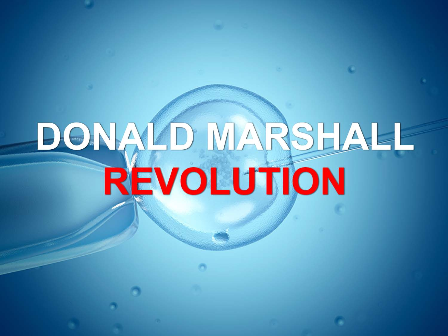 Donald Marshall Revolution